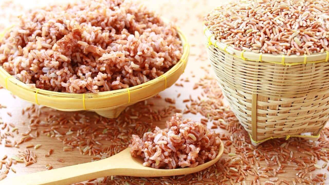 Selain Nasi Putih, 4 Jenis Nasi Ini Punya Beragam Khasiat Luar Biasa